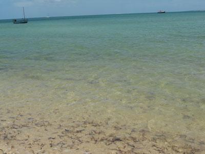 vilanculos-beach