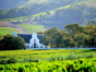 Buyers in Cape Winelands Predominantly Gauteng Semigrants, Increasingly Europeans