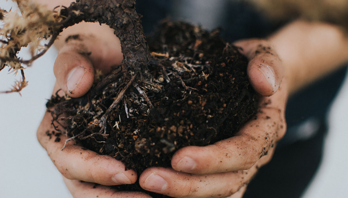 Make Composting Work