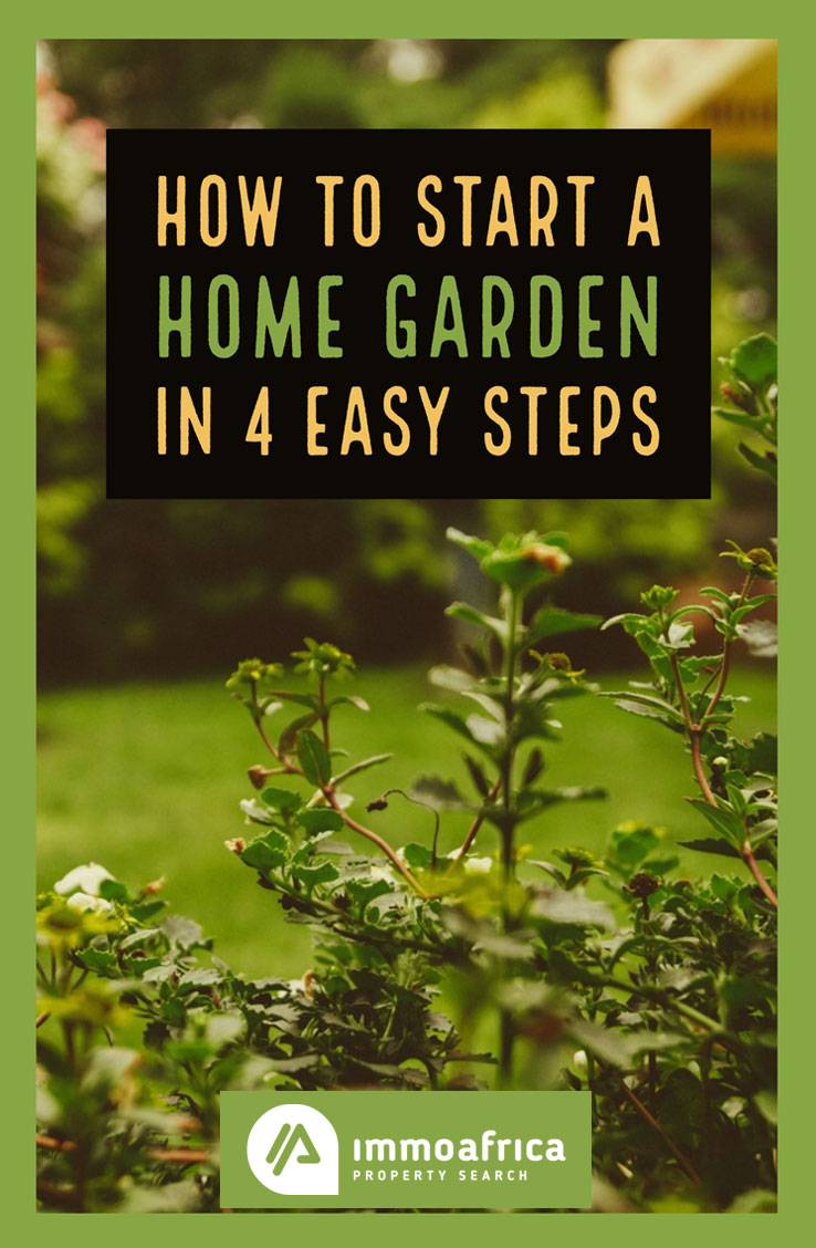 How to Start a Home Garden