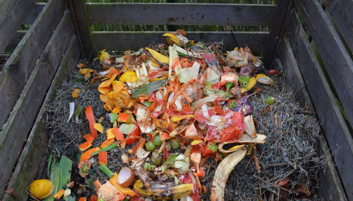 What Materials Can Be Composted