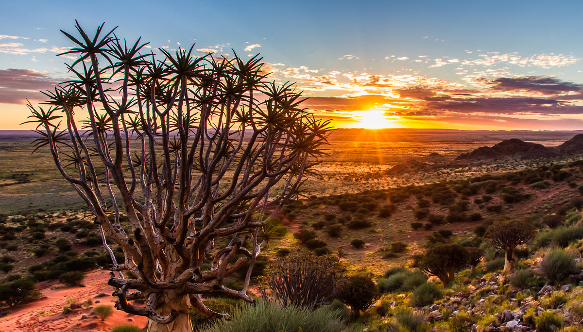 Northern Cape at a glance