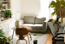 Things You Don't Really Need in Your Apartment
