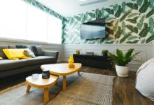 Renter-Friendly Remodel Ideas
