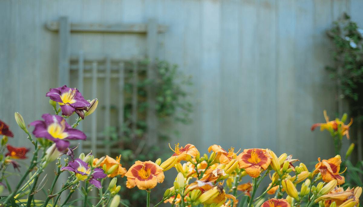Outdoor Trends Home Buyers Detest