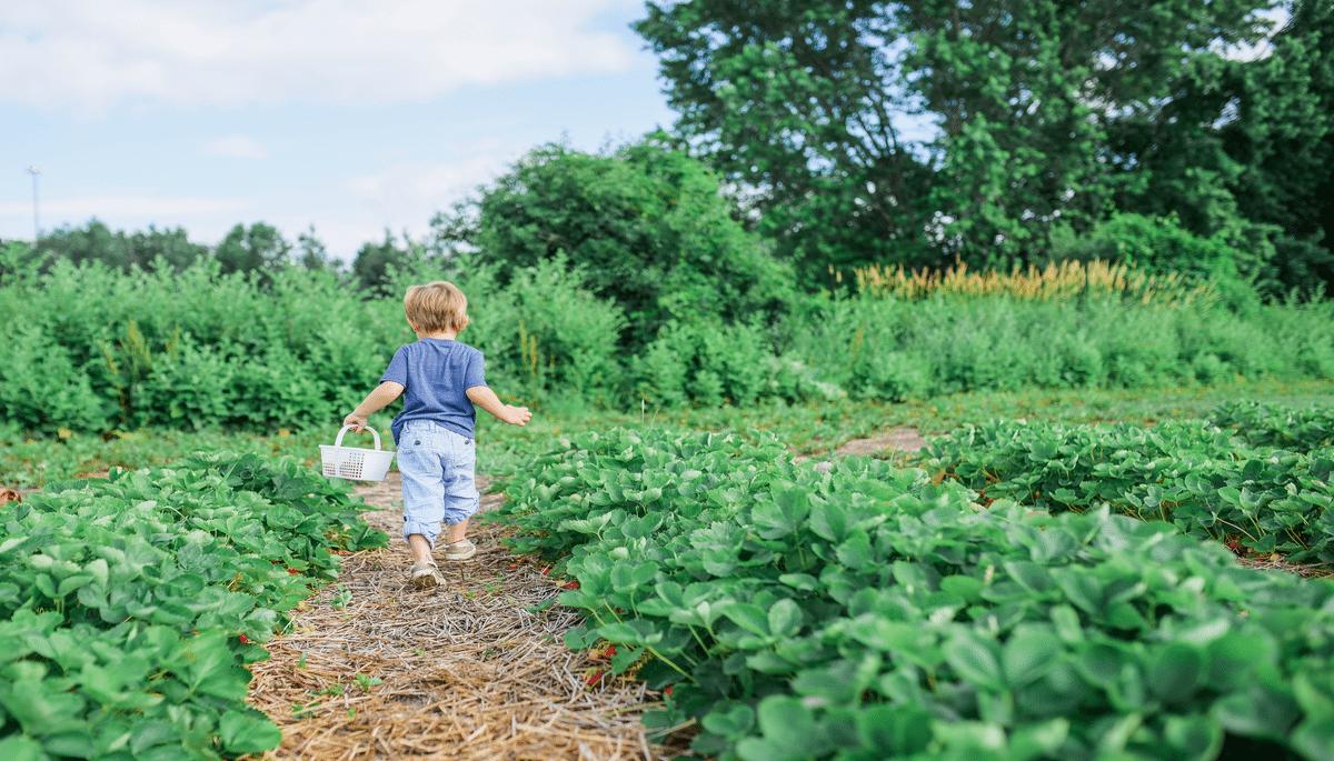 Health Benefits of Outdoor Gardening