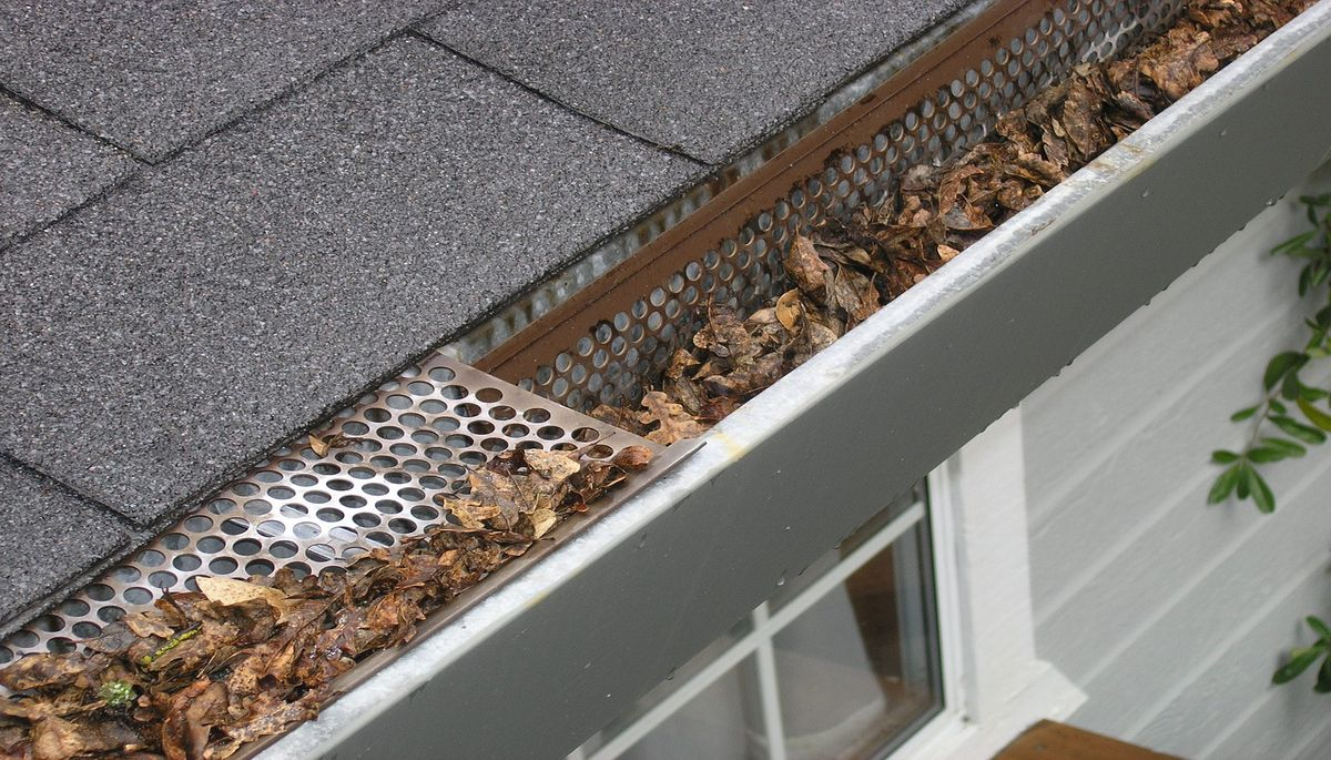 Reasons to Keep Your Gutters Clear