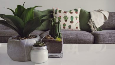 Photo of 6 Easy Decor Tips for Refreshing Your Living Room