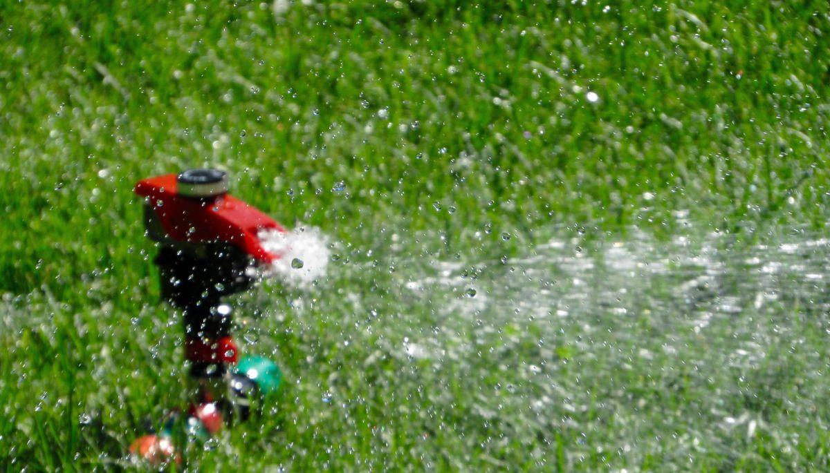 Water-Conserving Tips Garden