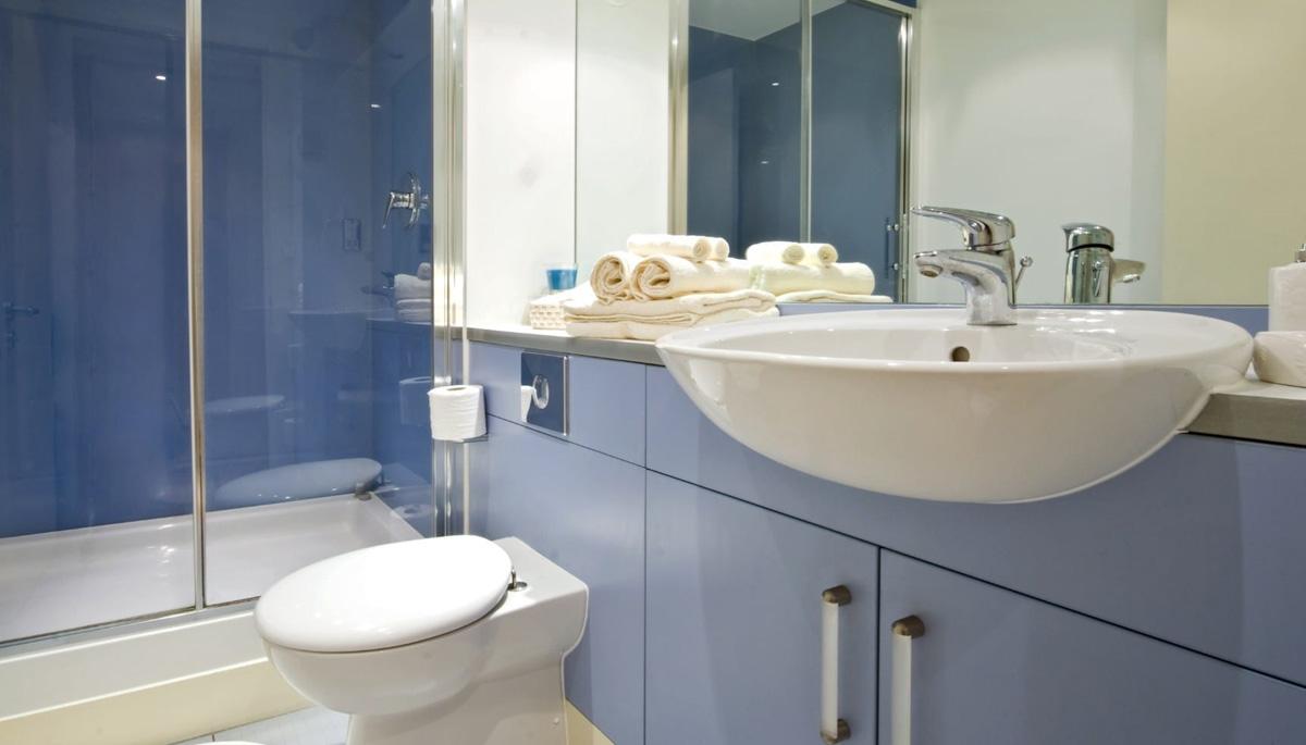 Toilet Suites Online: A Buyer's Guide