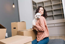 Photo of How to Rent with Pets