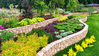 Photo of 4 Quick Landscape Renovations That Really Pay Off
