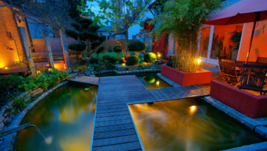 Photo of Backyard Landscaping Ideas That Will Make You Want To Spend More Time Outside
